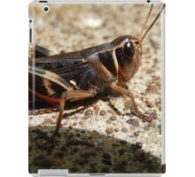 MACRO OF A GRASSHOPPER iPad Case/Skin