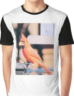 Male Cardnial, Graphic T-Shirt