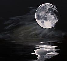 The fullest moon by Elisabeth Dubois
