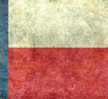 "The ""Lone Star Flag"" of The Lone State Texas Sticker"