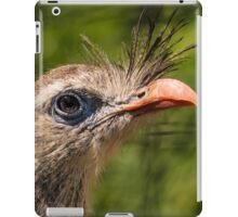 Red-legged Seriema Bird From South America iPad Case/Skin