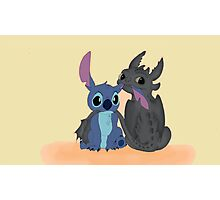 Toothless and Stitch Photographic Print