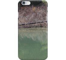 Fallen Down iPhone Case/Skin