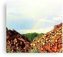 Wood and Rainbow Canvas Print