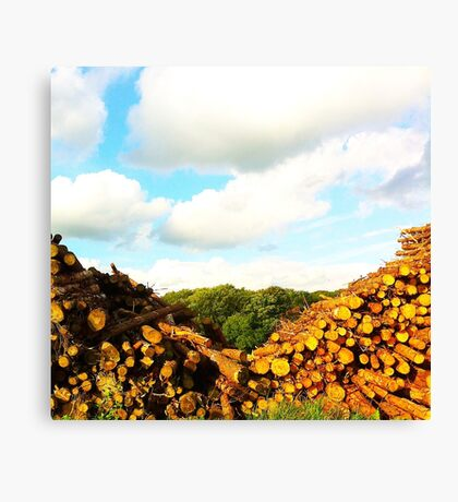 Log Valley Canvas Print