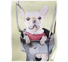 Frenchie On A Swing  Poster
