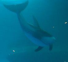 Swimming in the Deep by Lilgidget