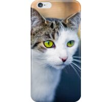 A green eyed Cat  iPhone Case/Skin
