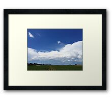 All ROWS Lead To Riceland Framed Print