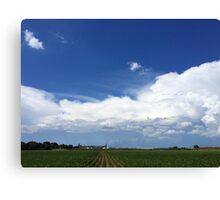 All ROWS Lead To Riceland Canvas Print