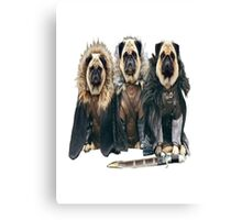 Game of Thrones - Pugs Canvas Print