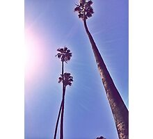 California Mornings  Photographic Print