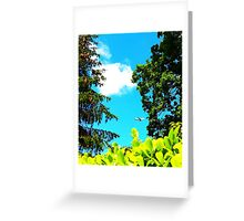 Pretty Plane in the Trees Greeting Card