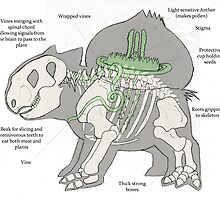Anatomical Bulbasaur (old) by JoshuaDunlop