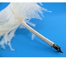 Ostrich quill pen Photographic Print