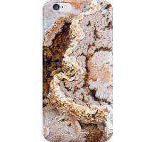 Conversation Starter iPhone Case/Skin