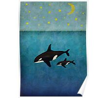 Whales at night Poster