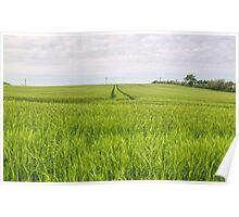 In The Fields Of Barley Poster
