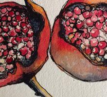 Pomegranate. Pen and wash 2012 Sticker