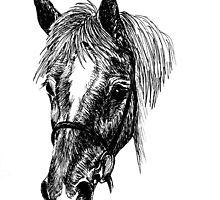 'Flossy' horse by mindgoop