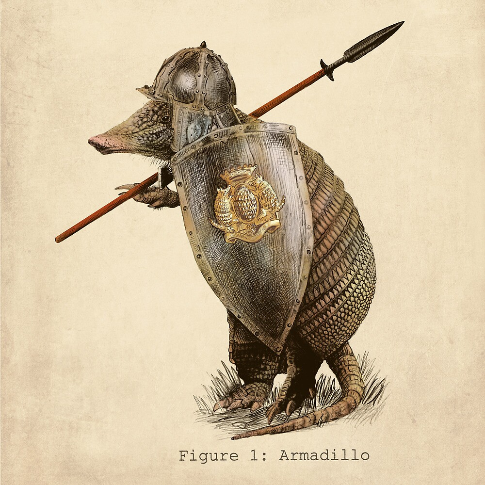 Armadillo by Eric Fan