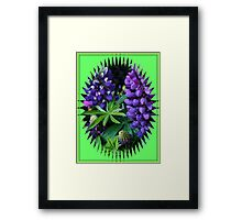 Lupins in Mirror Frame Framed Print
