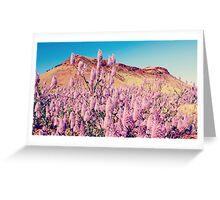 Royal Mulla Mulla - Pilbara, Western Australia Greeting Card