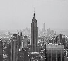 Empire State Building by lavishlifephoto