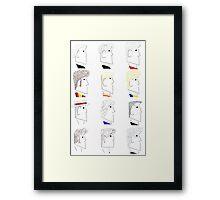 The Doctor Framed Print