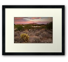 Sunset at the Oasis Framed Print