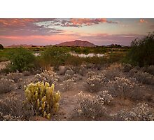 Sunset at the Oasis Photographic Print