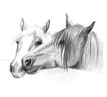 pony friends by mindgoop
