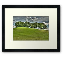 The Copse of Trees Framed Print