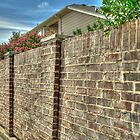 The Brick Wall by John  Kapusta