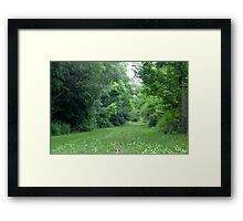 Hidden Path Framed Print