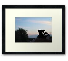 Tiny Toothless watching the sunset. Framed Print