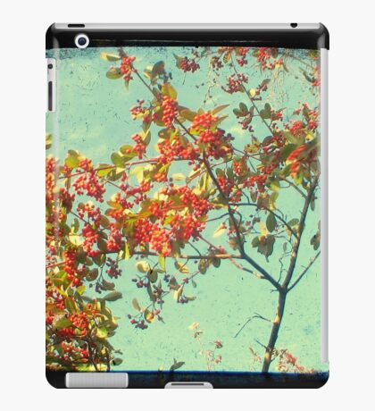 Look Up and Back iPad Case/Skin