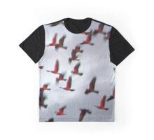 Follow the Sun Graphic T-Shirt