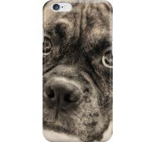Boxer Dog #1 iPhone Case/Skin