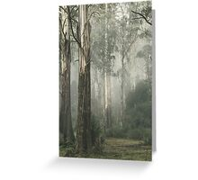 Whist Greeting Card