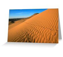 Desert sand dunes. Photographed in the Aravah region, Negev Desert, Israel  Greeting Card