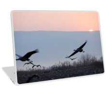 Common crane (Grus grus).  Laptop Skin