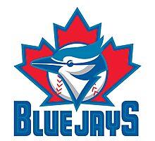 Toronto_Blue_Jays_Logo_ Photographic Print