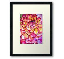 Pink Dahlia macro flower watercolour art Framed Print