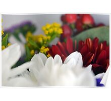 Macro on colorful flower petals. Poster