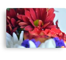 Macro on colorful flower petals in watercolor style Canvas Print