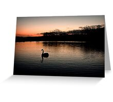 Solo at Sunset Greeting Card