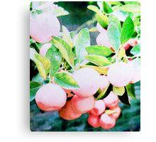 Grapefruit #redbubble #lifestyle Canvas Print