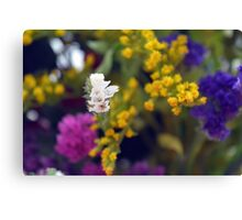 Colorful blurry small flowers pattern. Canvas Print