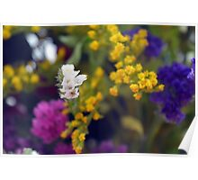 Colorful blurry small flowers pattern. Poster
